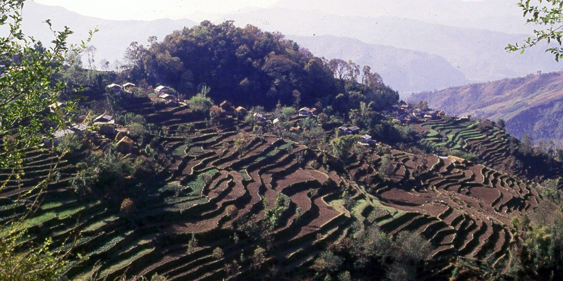 Terraced hillsides make up most of the middle hills of Nepal.