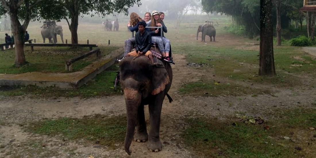 elephant-ride-1100x820
